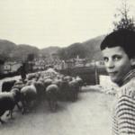 MEZZOGIORNO-1978